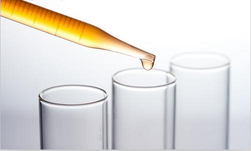 T酵母应用技术研究报告